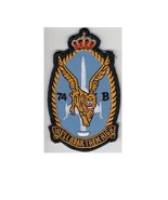 Belgium royal belgian air force rbaf 31st squadron f 104 course badge 4.75 x 2.75 in  thumbtall