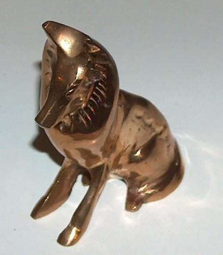 Brass collie dog