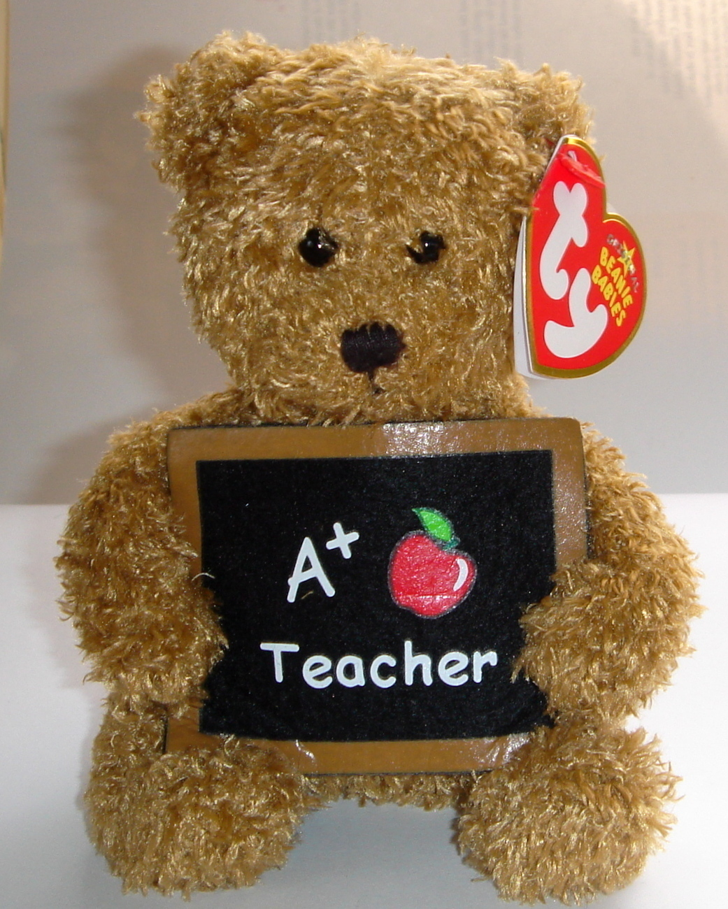 Retired Ty Beanie Baby ~ Cool Teacher the Bear ~ MWMT