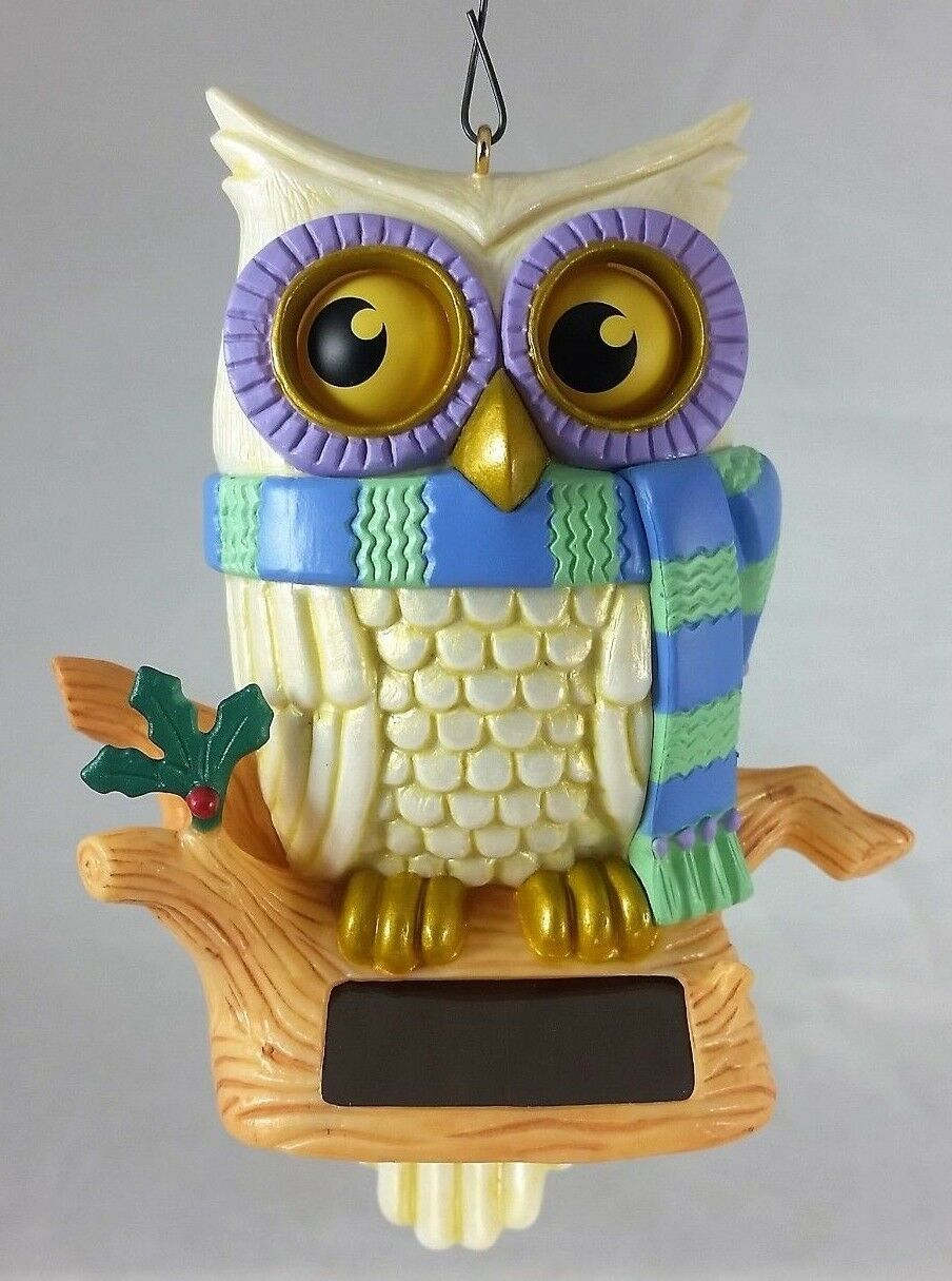 Primary image for Whoooo's Watching - 2014 Hallmark Keepsake Ornament Solar Power Owl NEW IN BOX