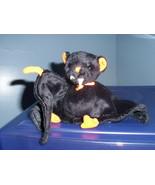 Bat-e Ty Beanie Baby MWMT 2003 - $7.99