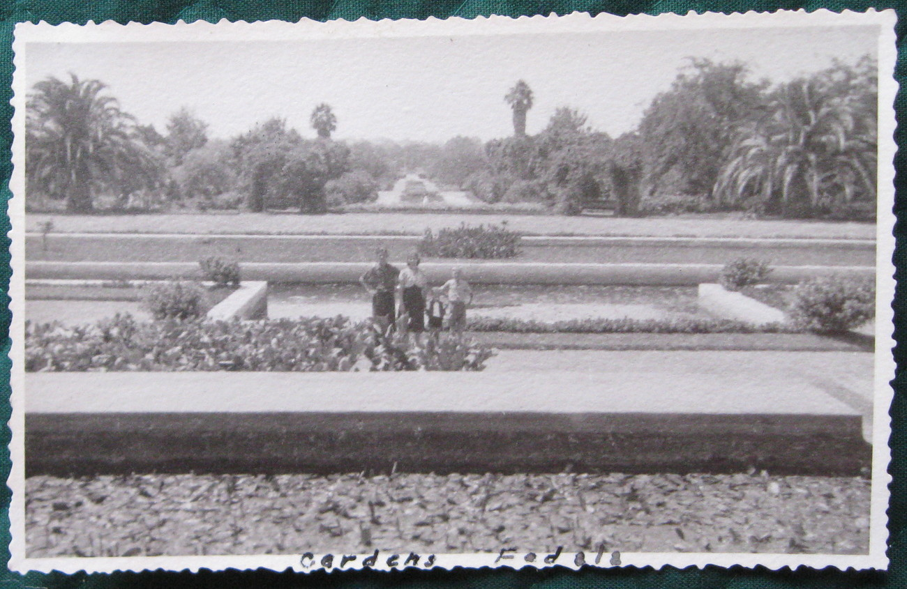 Primary image for Real Picture Post Card (RPPC) Gardens Fedala, Marrakech, Mor