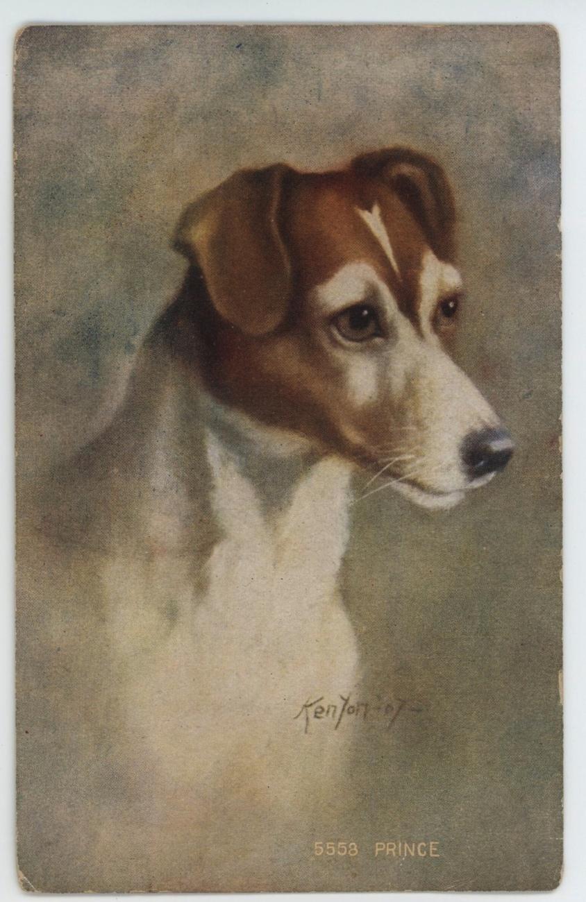 Dogprincepc