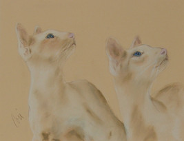 Siamese Cats Red Point Pastel Drawing Solomon - $110.00