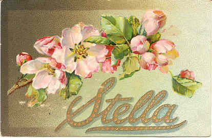 GreetingsTo My Dear Stella Vintage 1908 Post Card