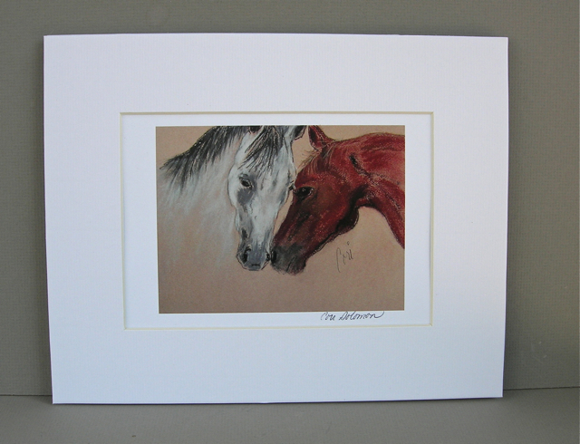 Horse Art Print Equine Signed Matted Solomon
