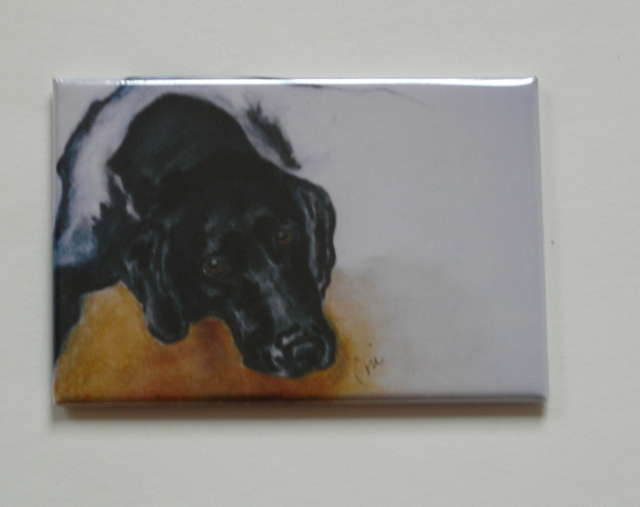 Black Labrador Dog Art Magnet Solomon