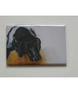 Black Labrador Dog Art Magnet Solomon - $6.50