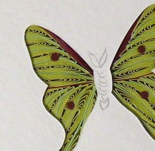 Tiny Quilled Luna Moth - $55.00