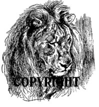 LION FACE new mounted rubber stamp - $8.50