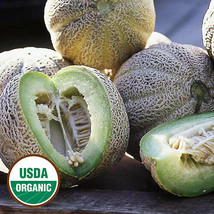 15 Seeds Edens Gem (Rocky Ford) ORGANIC Cantaloupe Melon Heirloom Fragrant Spicy - $2.29