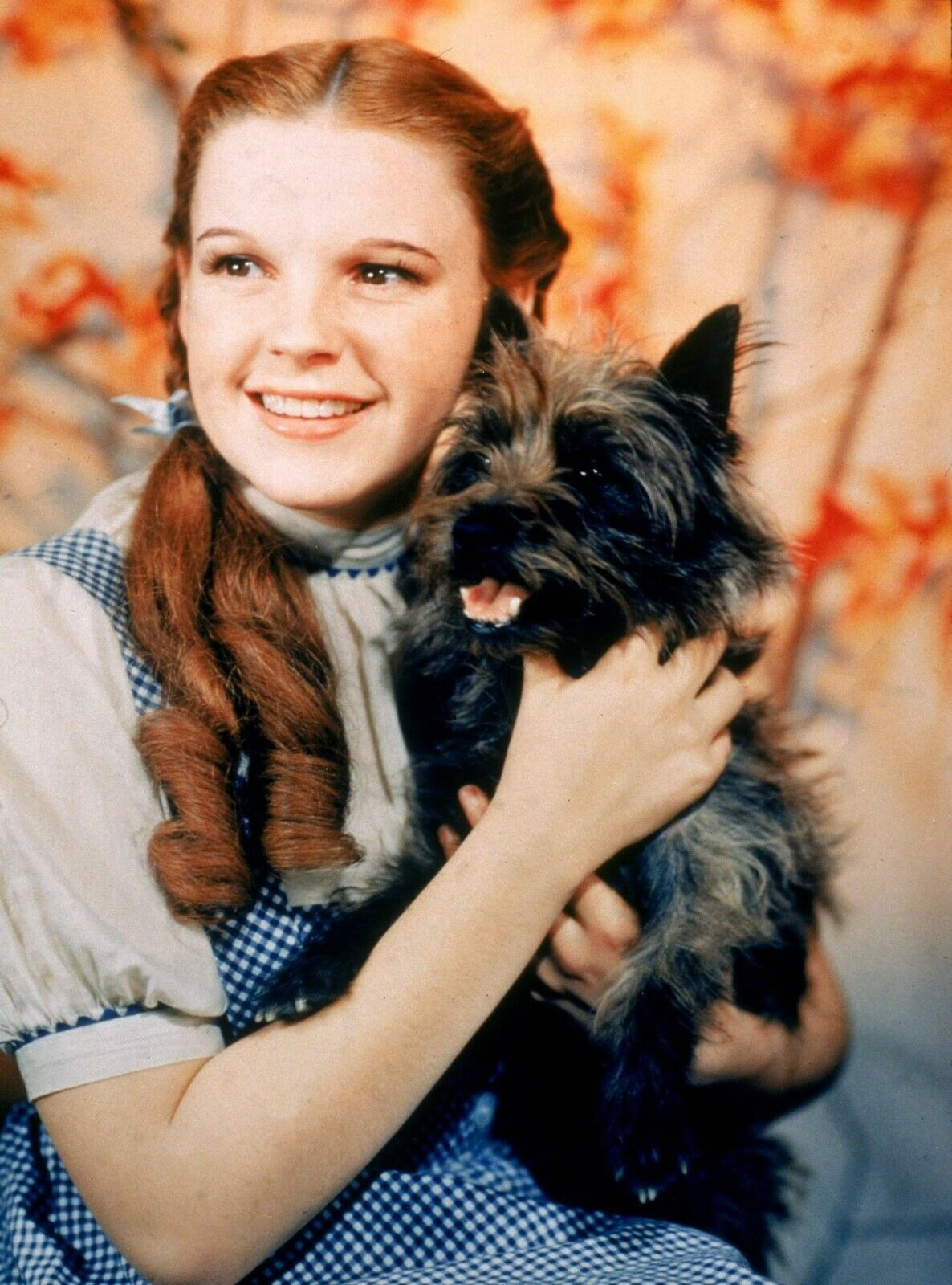 Primary image for Wizard of Oz  A Judy Garland Vintage 8X10 Color Movie Memorabilia Photo