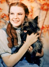 Wizard of Oz  A Judy Garland Vintage 8X10 Color Movie Memorabilia Photo - $6.99