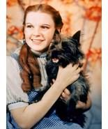 Wizard of Oz  A Judy Garland Vintage 8X10 Color Movie Memorabilia Photo - $6.99
