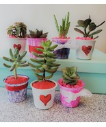 """Valentine Succulents, Set of 3, Hand Painted Planters, 2"""", Valentine Gift - $14.99"""