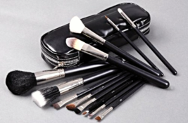 M.A.C. Professional 12 Piece Makeup Brush Set With Carrying Case - $120.00
