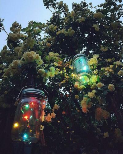 DAFLEXX Lanterne solaire Sunset XMAS à LED pour la décoration de maison et...