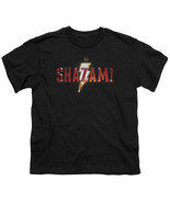 Authentic DC Comics Shazam Movie Light Bolt Logo Boy Youth T-shirt S M L... - £19.36 GBP