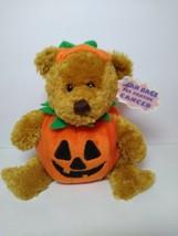 "Halloween Pumpkin Teddy Plushland 2000 Bean bag Plush 6"" Fighting Cancer... - $19.79"