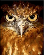 """Lovely Owl Animal 16X20"""" Paint By Number Kit DIY Oil Painting on Canvas ... - $8.99"""