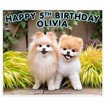 Boo the Worlds Cutest Dog With Buddy Birthday Banner Decoration - $50.61 CAD