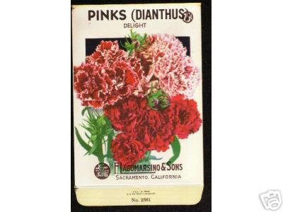 1920's Flower seed Packet Lago Pinks Dianthus Delight
