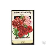1920's Flower seed Packet Lago Pinks Dianthus Delight - $10.00