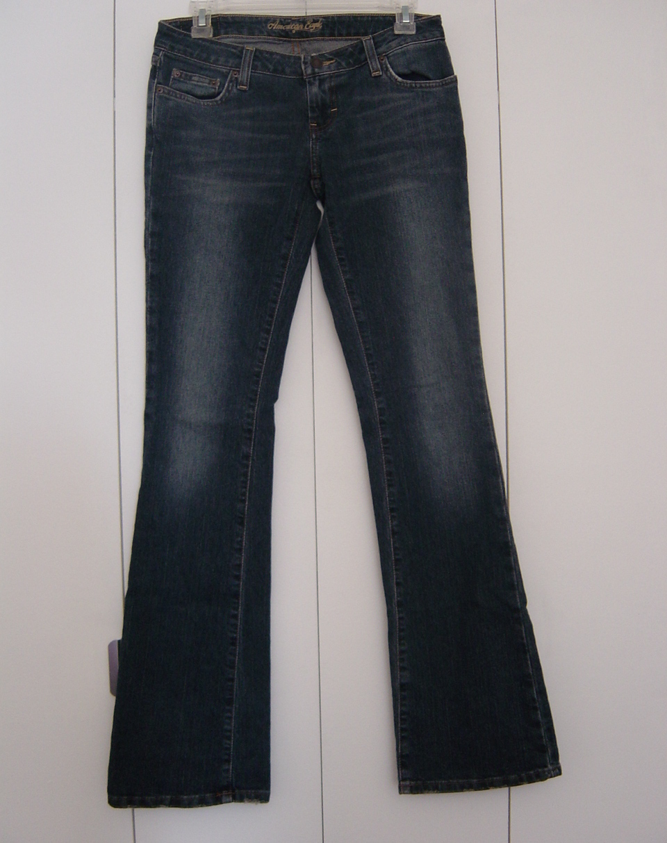 Primary image for American Eagle Stretch Skinny Flare Jeans (Size 2L) EUC