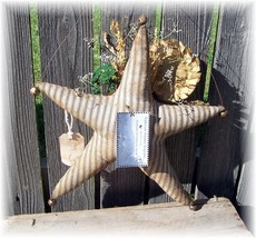 Star sunflower harvest back view thumb200