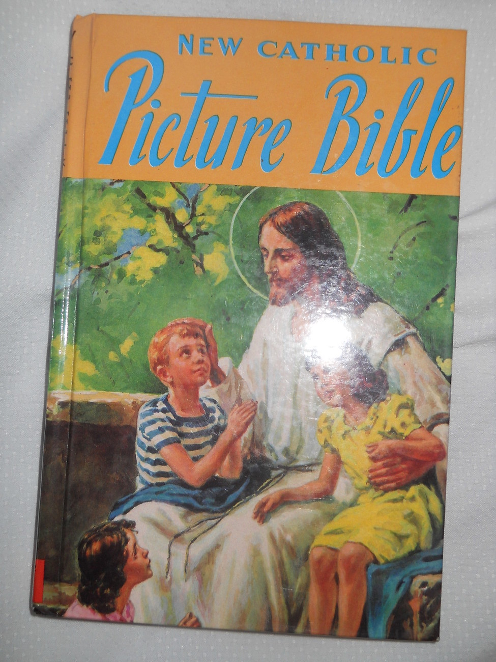 New Catholic Picture Bible Rev Lawrence Lovasik Religious Art 100 Stories Simple