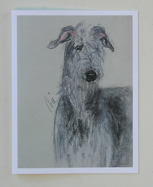 Scottish deerhound note cards by cori solomon