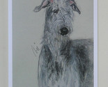 Scottish deerhound note cards by cori solomon thumb155 crop