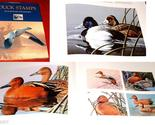 Duck stamps thumb155 crop