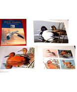 Duck Stamps Art in Service of Conservation Weidensaul Art Federal Postag... - $15.00