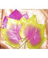 Vintage Millinery Flower Leaf Purple Lime Gn MA... - $9.29