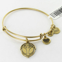 Alex and Ani Unexpected Miracles Expandable EWB Bracelet Rafaelian Gold NWT - $23.27