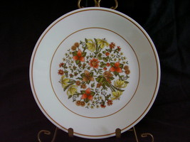 Corelle Indian Summer Lunch Plates Autumn Brown - $4.00