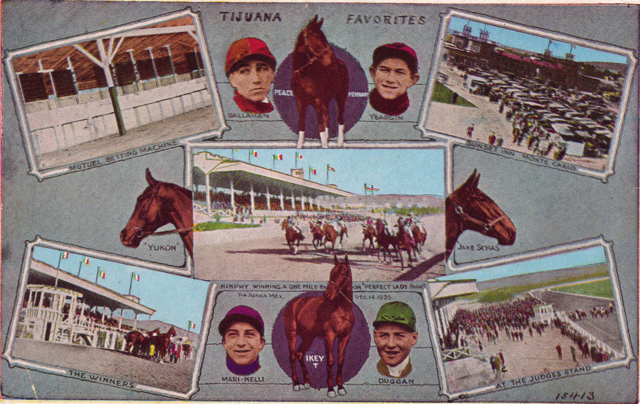 Primary image for Tijuana Race Track Horse of the Year Postcard