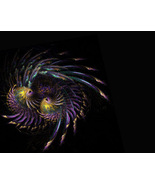 Rooster Dance, Fractal Based Digital Art sized 11x14 gold, p - $24.99