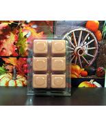 Autumn Spice  Breakaway Clamshell Soy Wax Tart Melts - $3.50