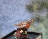 Jeannetta kendall bird figurine jc09 robin 1 gemjanes dollhouse miniatures 1 lg thumb thumb155 crop