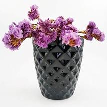 Succulent Black Planter 3.7 Inch Round Ceramic Orchid Pot Cactus Plant C... - $15.96