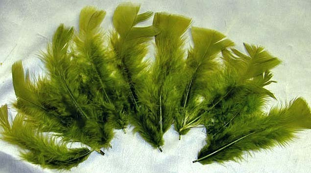 Feathers Bright Sage Green Natural Dyed 6in lot of 10