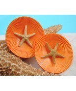 Vintage Starfish Tropical Earrings Round Tangerine Orange - $17.95