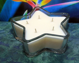 Bird of Paradise PURE SOY Star Container Candle 11 oz. - $9.50