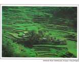 Phil postcard banaue thumb155 crop