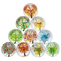 Koala Superstore Home Office Decorative Magnets Beautiful Glass Refrigerator Mag - $18.14