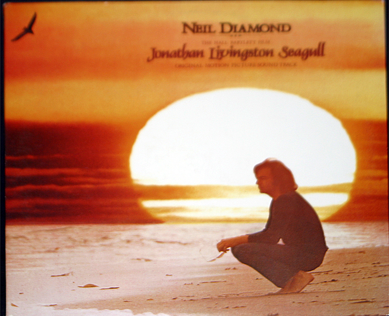 Neil diamond johnathan livingston seagaul cover