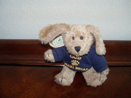Boyds Bears Bailey's Puppy Dog Indy Spring 2000 MWT  - $15.99
