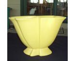 Hagar yellow thumb155 crop